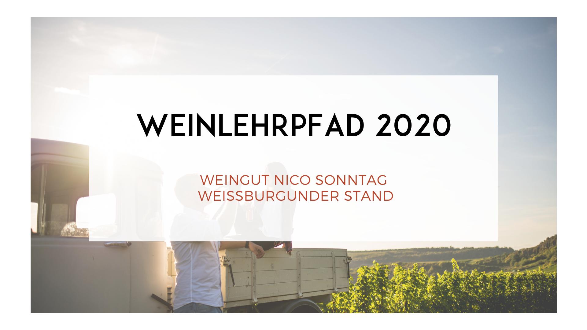 WEINLEHRPFAD 2020